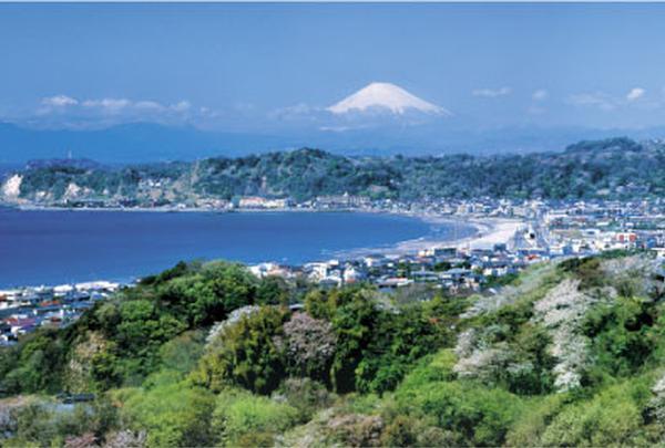 鎌倉市のホームページ