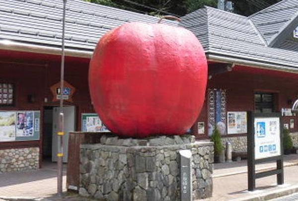 道の駅 はがの写真・動画_image_233657