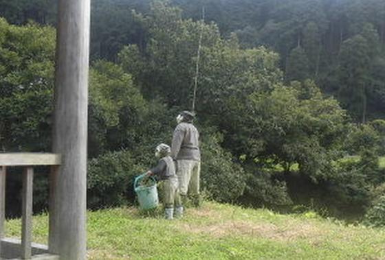 釣りを楽しむ、かかし