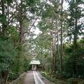 寿福寺の写真_123497