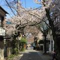 鎌倉宮の写真_126704