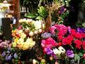 青山フラワーマーケット ティーハウス 南青山本店 (Aoyama Flower Market TEA HOUSE)の写真_137723