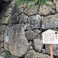 上田城跡公園の写真_146395