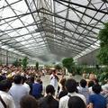 掛川花鳥園の写真_148828