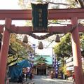 須賀神社の写真_166867