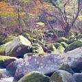マゼノ渓谷の写真_168002