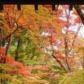 光明寺の写真_169053