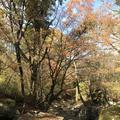 マゼノ渓谷の写真_173045