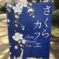 東京国立博物館の写真_185964