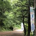 智光山公園前山池の写真_204401