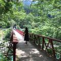 抱返り渓谷の写真_209356