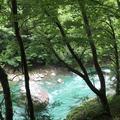 抱返り渓谷の写真_209358