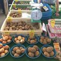 鎌倉市農協連即売所の写真_220054