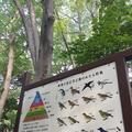 有栖川宮記念公園の写真_223110