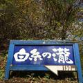 白糸の滝の写真_231639