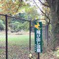 軽井沢タリアセンの写真_231927