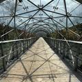 鳥取県立フラワーパークとっとり花回廊の写真_234868