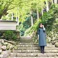 伊万里大川内山の写真_246284