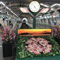 江ノ島電鉄(株) 鉄道部藤沢駅の写真_246731