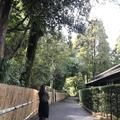 沈壽官窯の写真_249796