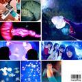 新江ノ島水族館の写真_250244