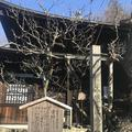 瑞泉寺の写真_250400