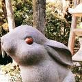 岡崎神社の写真_261355