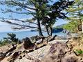 城ヶ崎海岸の写真_264610