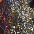 彫刻の森美術館の写真_266653