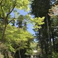 円覚寺の写真_270754