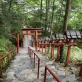 貴船神社の写真_282213