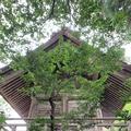 須佐神社の写真_322514