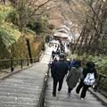 清水寺の写真_334574