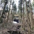 上色見熊野座神社の写真_338405