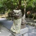 貴船神社 奥宮の写真_366015