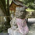 貴船神社 奥宮の写真_366016