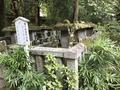 高桐院の写真_372359