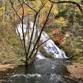 湯滝の写真_389846