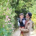 備瀬のフクギ並木の写真_415235