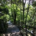 万葉公園の写真_93283