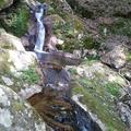 朝来市 不動の滝の写真_32957