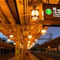 嵐山公園の写真_10051