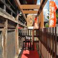 木之本地蔵院の写真_10891