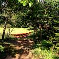 喫茶風の丘の写真_12836