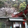 荏柄天神社の写真_183187