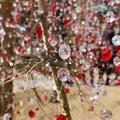 箱根ガラスの森美術館の写真_266433