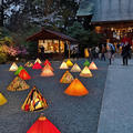 小田原城の写真_266447