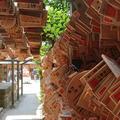 氷川神社の写真_282011