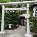 川越熊野神社の写真_292957