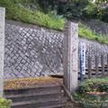 王子神社(王子権現)の写真_332244